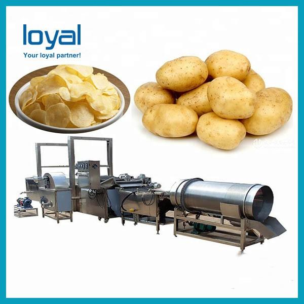 Automatic Commercial Potato Chip Maker , Fryer French Fries Potato Chips Production Line #2 image